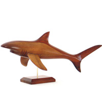 Video Lasterne - Les miniatures sur socle - Le requin en chasse - 50 cm - Last-ARE050S-R