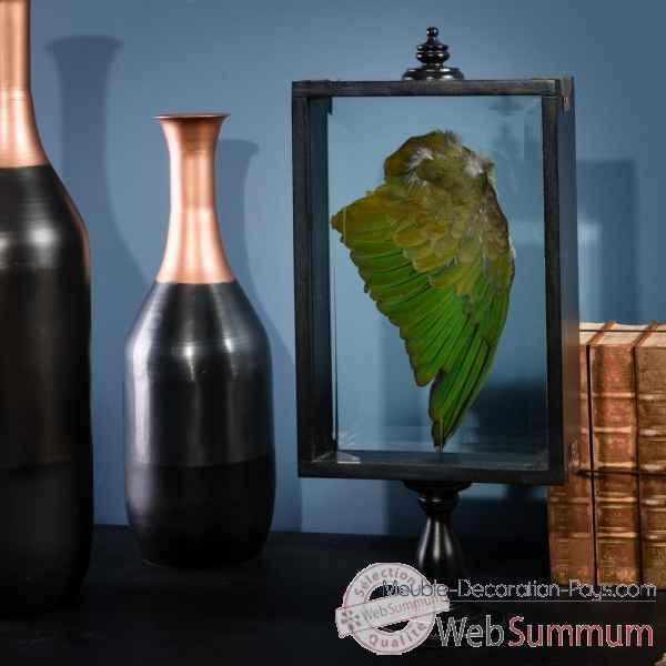 aile verte perruche a collier objet de curiosit pu570 1 de objet original du monde. Black Bedroom Furniture Sets. Home Design Ideas