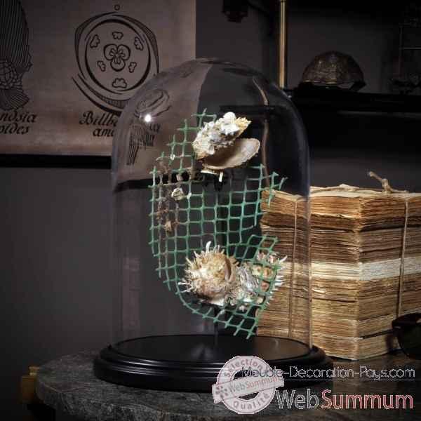 d chet de la mer sous globe rond pm objet de curiosit de objet original du monde a. Black Bedroom Furniture Sets. Home Design Ideas